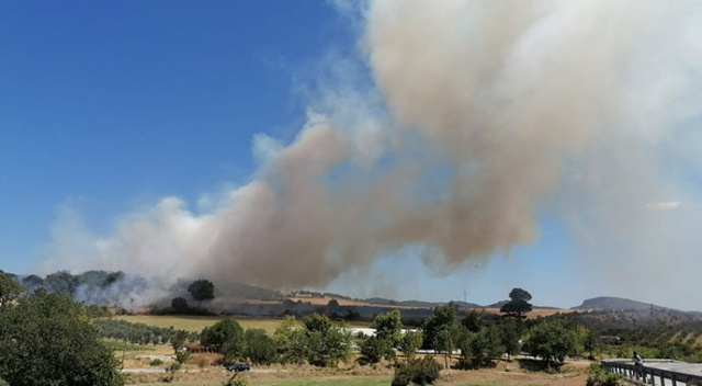 Kurşunlu köyündeki yangın kontrol altında