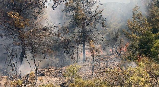 Fethiye'de çıkan orman yangını söndürüldü