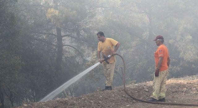 Menderes'teki orman yangınıyla ilgili önemli gelişme: O şahıs tutuklandı