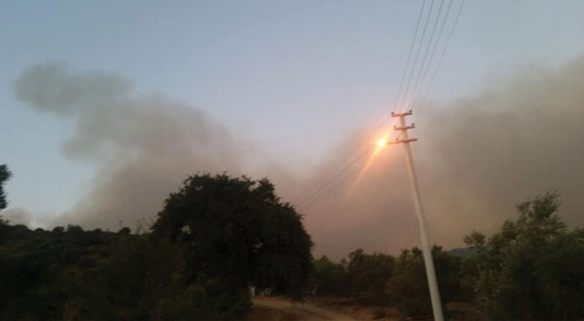 Menderes'teki yangın Kuşadası Körfezi'nde Ahmetbeyli'ye sıçradı