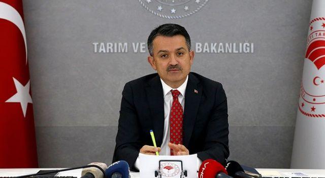 Bakan Pakdemirli açıkladı: TMO kuru kayısıyı 21-23 liradan alacak