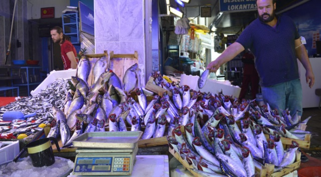 Balıklar bollaşıyor, fiyatlar düşüyor