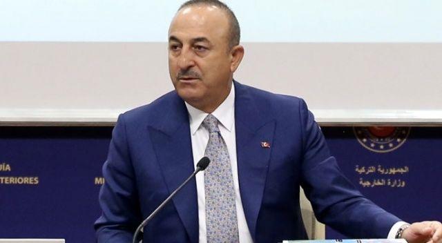 Çavuşoğlu: Türk milletine saygı duymayı öğreneceksin!