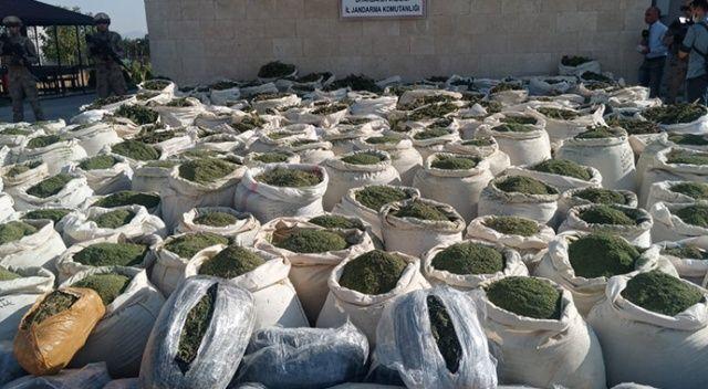 Diyarbakır'da son 9 ayda 97 milyon kök kenevir ve 42 ton esrar ele geçirildi