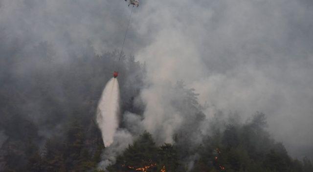 Eskişehir'de korkutan orman yangını