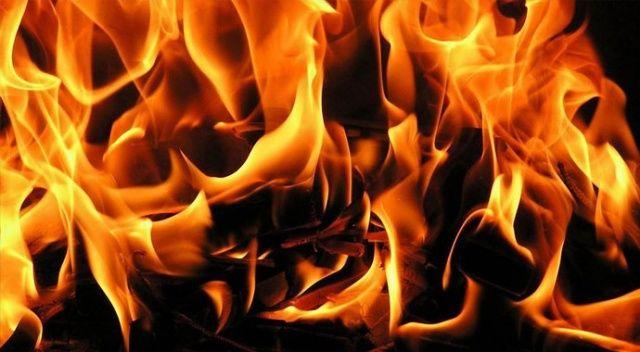 Gökçeada'da meralık alanda korkutan yangın