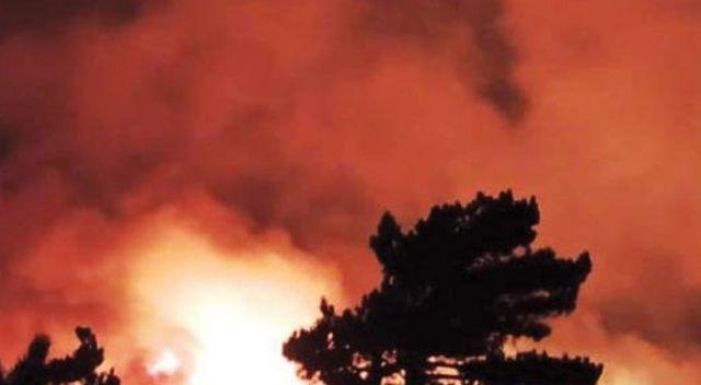 İzmir'de başlayan yangın Balıkesir'e dayandı