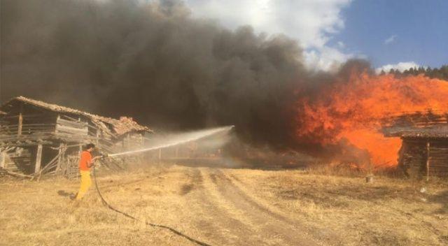 Kastamonu'da çıkan yangında 6 yayla evi küle döndü