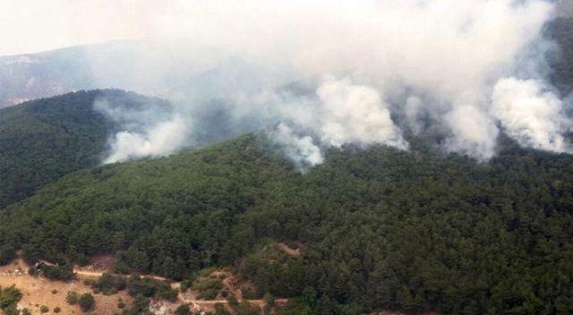Kazdağları'ndaki orman yangını kontrol altına alınarak söndürüldü
