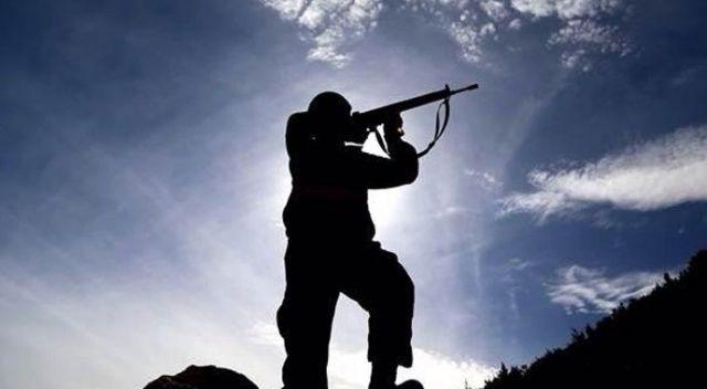 Mardin'de 2 terörist güvenlik güçlerine teslim oldu