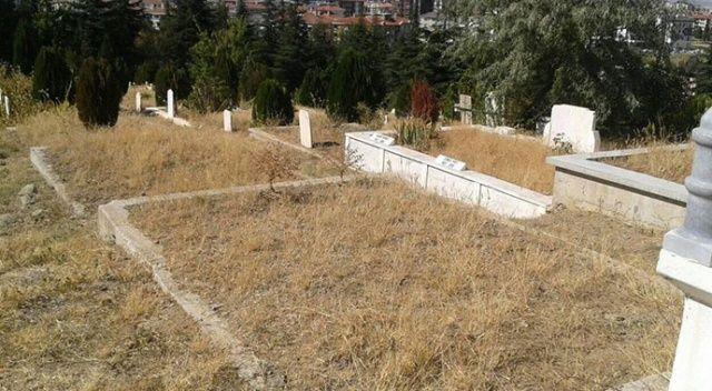 Mezar yerleri 2 yılda altından daha fazla değer kazandı