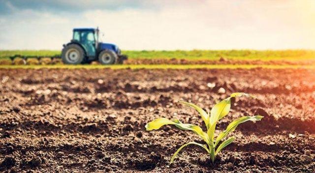 Pandemide tarıma 14 milyar TL