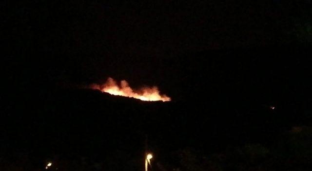 Soma'da ormanlık alanda yangın