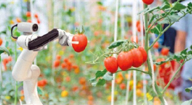 Tarladan sofraya akıllı tarıma 1 milyar lira