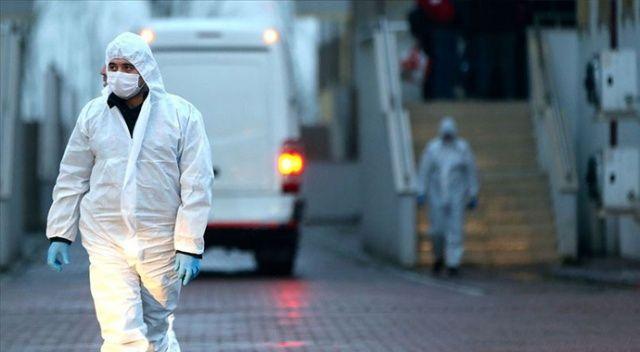 BAE'de 24 saatte bin 312 koronavirüs vakası kaydedildi