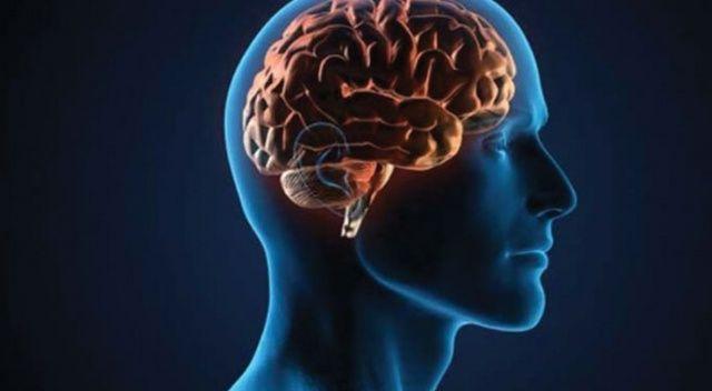 Bilim adamları, kafatasında yeni bir organ bulduklarını açıkladı
