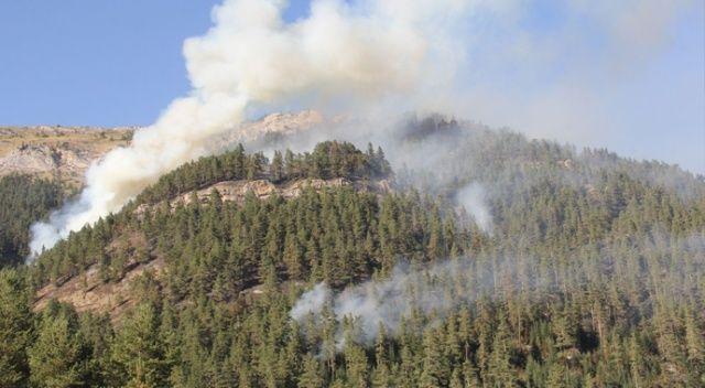 Kastamonu ormanları 4 gündür yanıyor