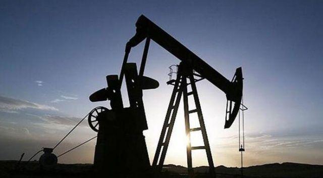 OPEC+ ülkelerinin hedefi, petrolün varil fiyatını 40 doların üzerinde tutmak