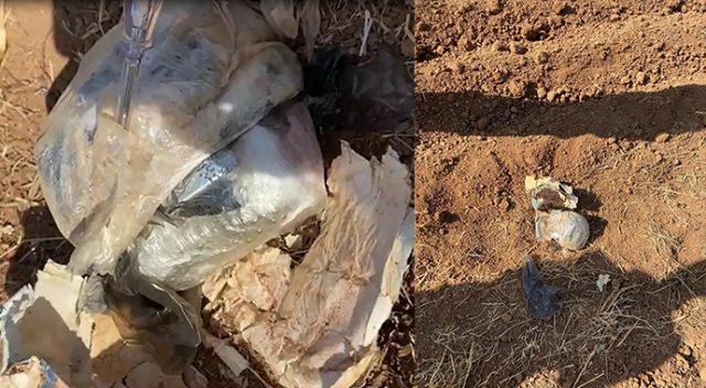 Yol kenarında bomba düzeneği bulundu