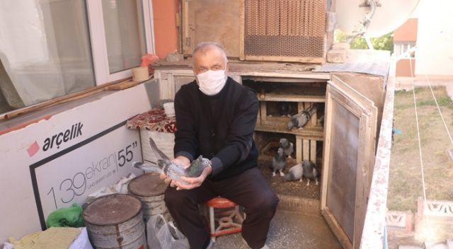 65 yıllık tutkusundan vazgeçemeyen yaşlı adam, evinin balkonunu kümese çevirdi