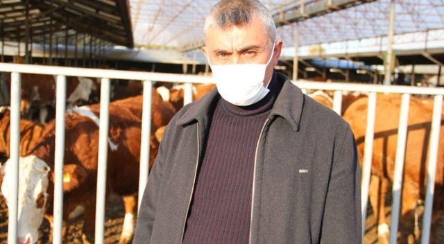Kaymakamlıktan aldıkları 3 düve ile hayvancılık sektörüne atılan aile ihracata başladı