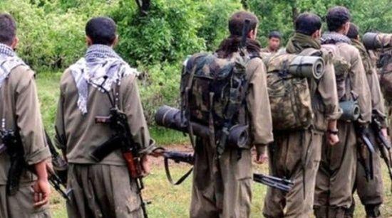 Şırnak'ta 1'i gri kategoride aranan 2 terörist ikna sonucu teslim oldu
