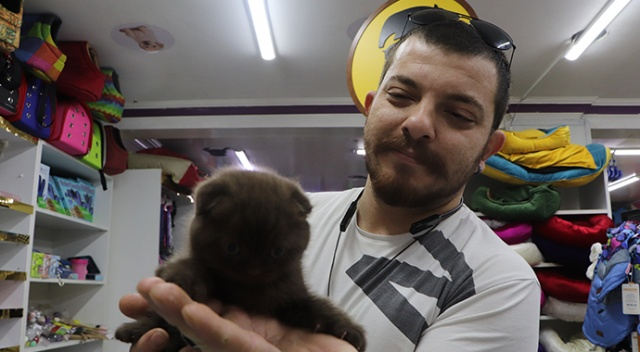 Evcil hayvan dükkanları taleplere yetişemiyor