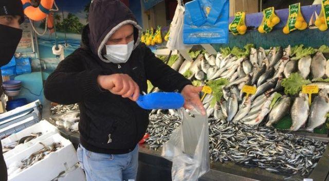 Tokat'ta hamsi fiyatları cep yakıyor