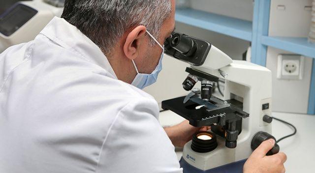 Yeni bakteri cinsi ve türü keşfedildi