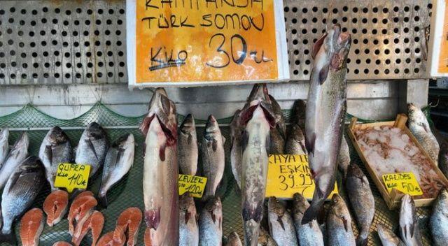 Norveç somonuna rakip: Türk somonun kilosu 30 lira
