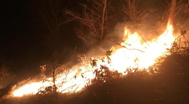 Ordu'daki korkutan yangını mahalleli söndürdü