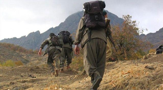 Yılbaşı gecesi yakalanan terörist kırmızı bültenle aranan DEAŞ'lı çıktı