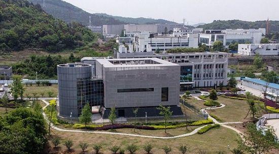 Çin koronavirüsle ilgili kritik verileri siliyor: Yüzlerce dosya kayıp