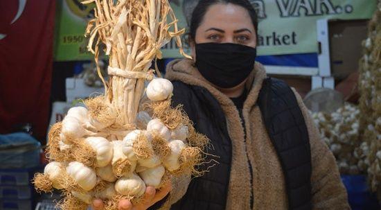 Üreticisi anlatıyor: Yerli sarımsak ile Çin sarımsağı nasıl ayırt edilir?