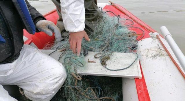 Kaçak olarak avlanan 750 kg canlı balık suya bırakıldı