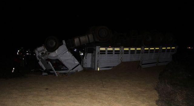 Manisa'da arpa yüklü tır devrildi: 2 yaralı