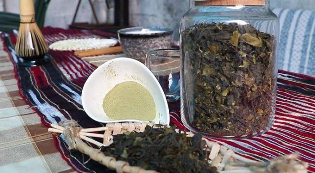 Matcha çayı şifa dağıtıyor