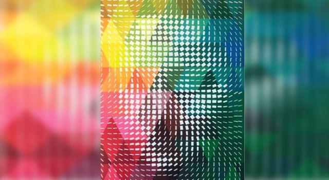 Optik illüzyonlu resimler!
