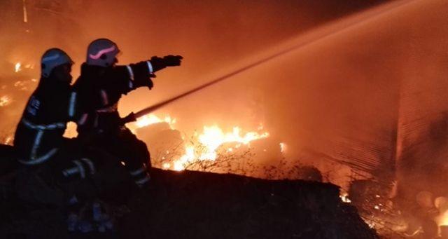Yalova'da ev yangını: 1 ölü