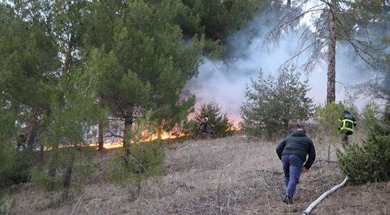 Adana'da çıkan orman yangınında 2 dönüm alan yandı