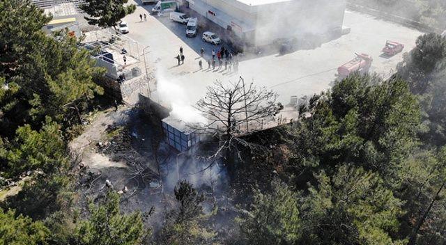 Bodrum'da büyük panik! Kaynak yaparken ormanı yaktılar