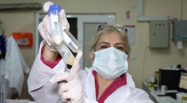 Covid-19 tedavisinde Zonguldak'tan umutlandıran gelişme