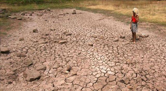 Tayvan'da son 56 yılın en şiddetli kuraklığı yaşanıyor