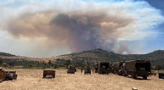 İngiliz askerleri Kenya'da piknik yaparken yangın çıkardı, 5 fil yanarak öldü