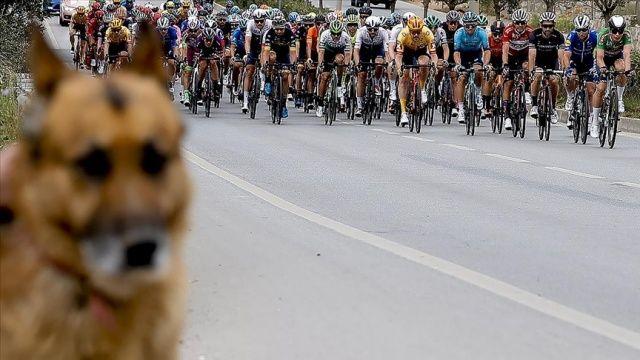 56. Cumhurbaşkanlığı Türkiye Bisiklet Turu'nun Bodrum-Kuşadası etabı başladı