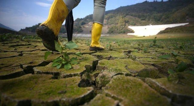 AB kurumları iklim yasasında uzlaştı