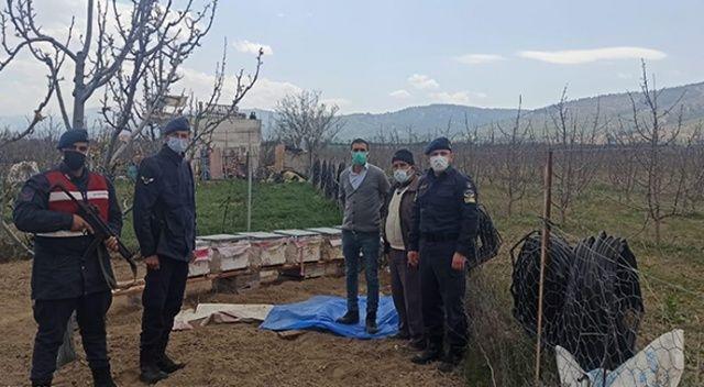 Antalya'da arı kovanlarını çalan hırsız yakalandı