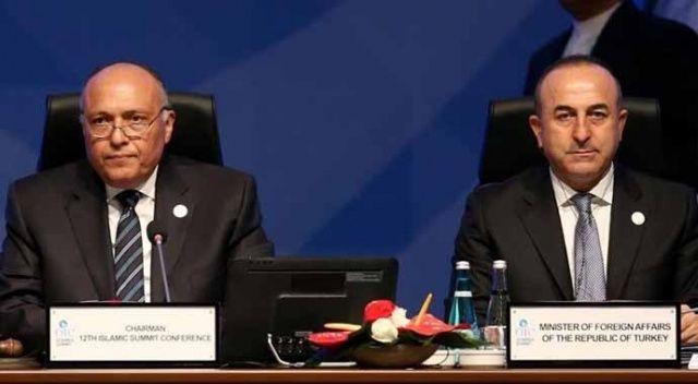 Dışişleri Bakanı Çavuşoğlu, Mısırlı mevkidaşı Shoukry'le görüştü