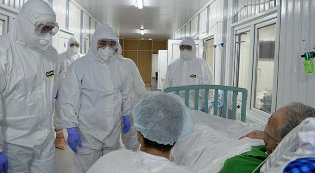 Kırgızistan'da Covid-19'a karşı önerilen bitkiden 2 kişi zehirlendi