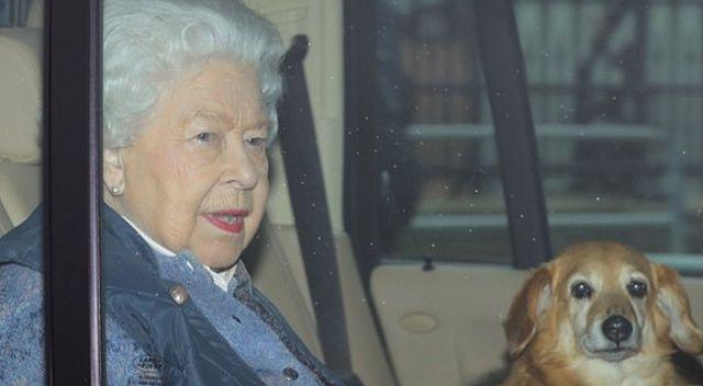 Kraliçe Elizabeth, kocasının acısını unutmak için kendisini yeni iki köpeğine verdi